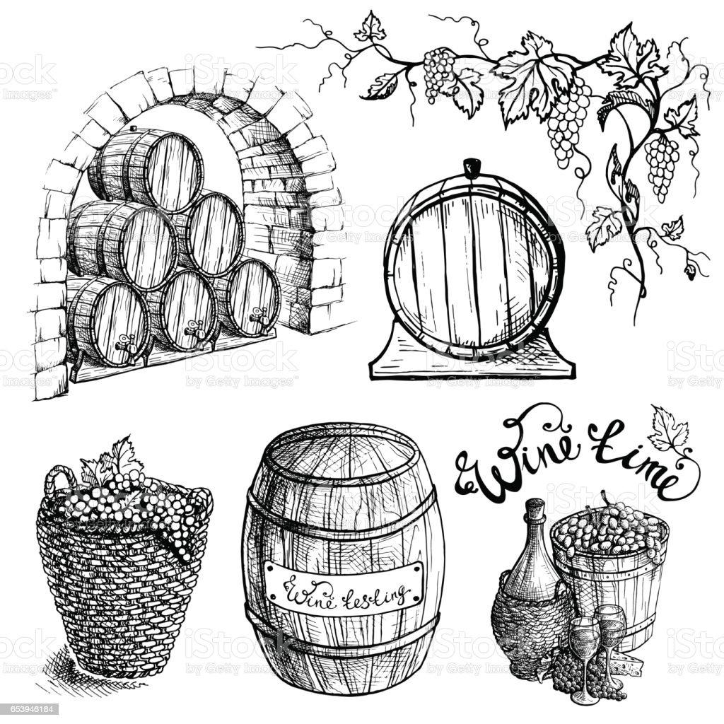 Vector set of grape and wine barrels