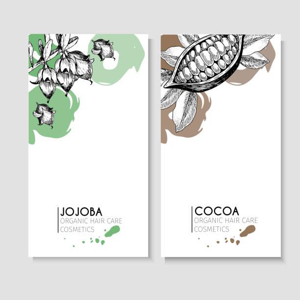 vector set haar pflegestoffe. bio handgezeichneten elementen. flyer mit jojoba und kakao. - naturseife stock-grafiken, -clipart, -cartoons und -symbole