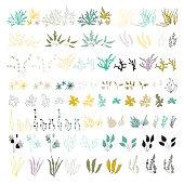 Sea plants and aquarium seaweed vector set. Nature seaweed black silhouette illustration