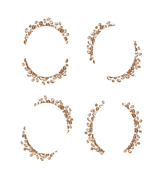 Vector set of hand drawn simple frames made with coffee beans isolated on white background. vector art illustration