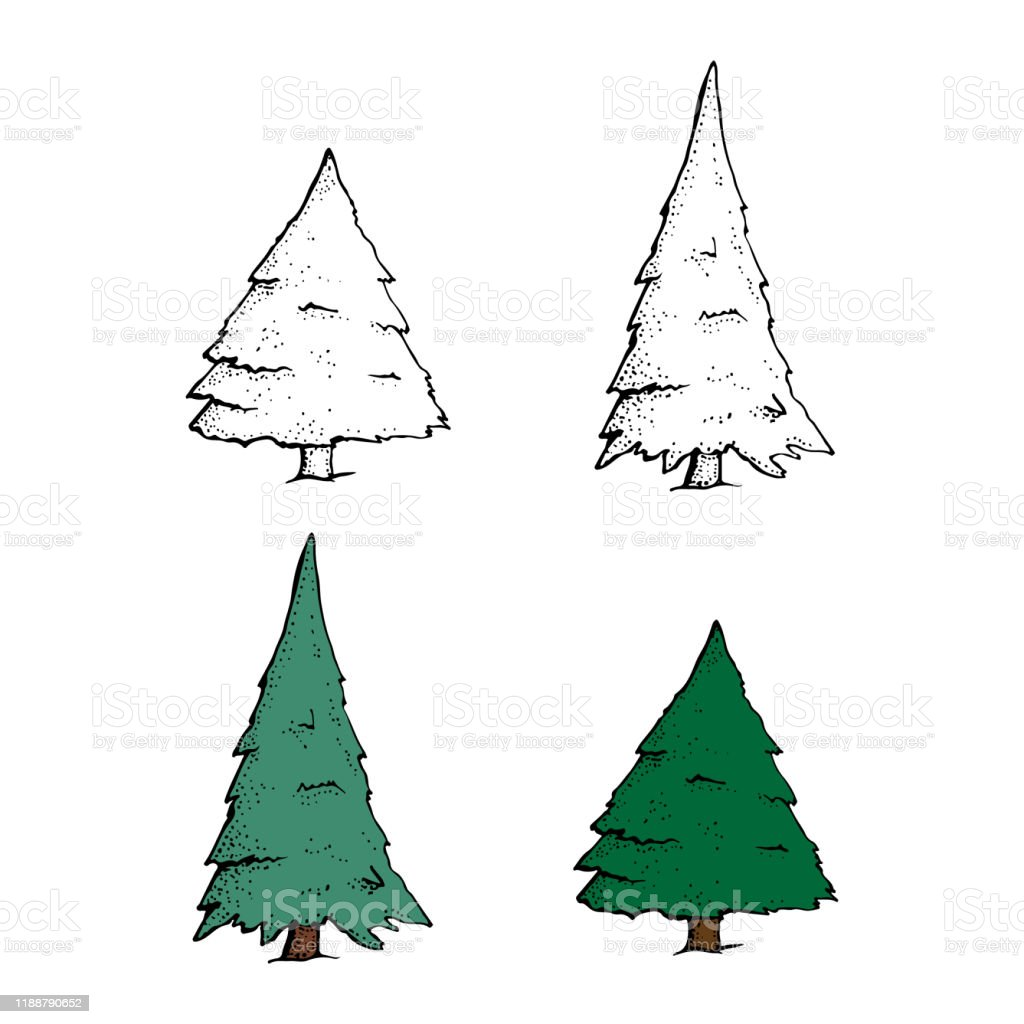Vector Set Of Hand Drawn Sketch Pine Trees Cartoon Spruce Isolated On A White Background Christmas Design Elements Doodle Style Stock Illustration Download Image Now Istock