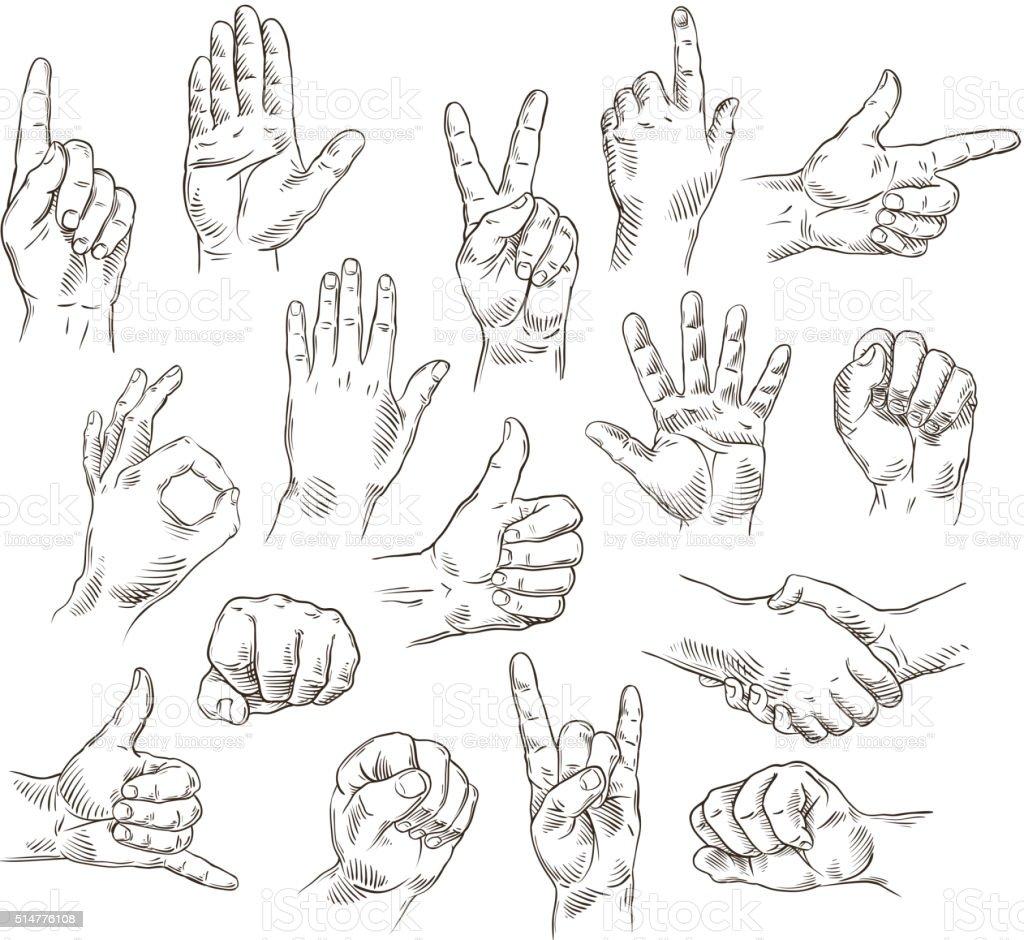 Vector set of hands and gestures - outline illustration vector art illustration