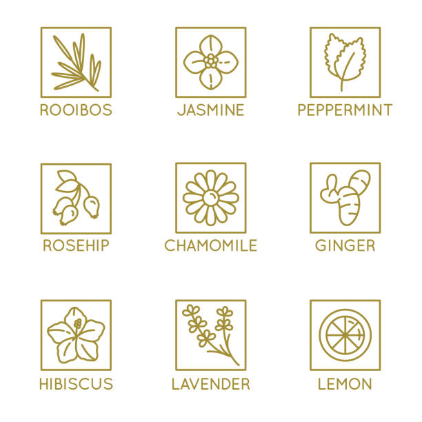 Vector set of herbal organic tea badges and icons in linear style Vector set of herbal organic tea badges and icons in linear style - healthy drinks caffeine free packaging design elements lavender plant stock illustrations
