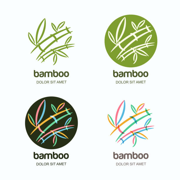 Vector set of icon or emblem with hand drawn multicolor creative bamboo plant. vector art illustration