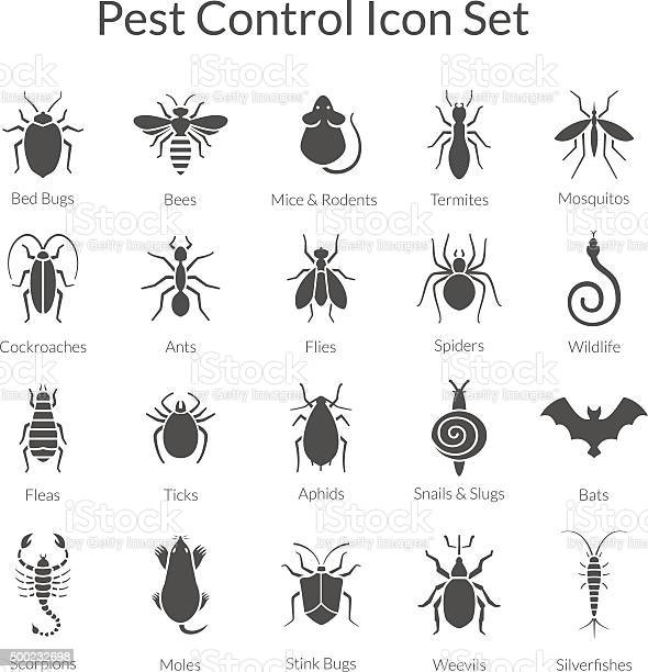 Vector set of icons with insects for pest control business vector id500232698?b=1&k=6&m=500232698&s=612x612&h=p0gpz nyhmvlevp68 zkhofk9eotmo6x8e128tt5lgs=