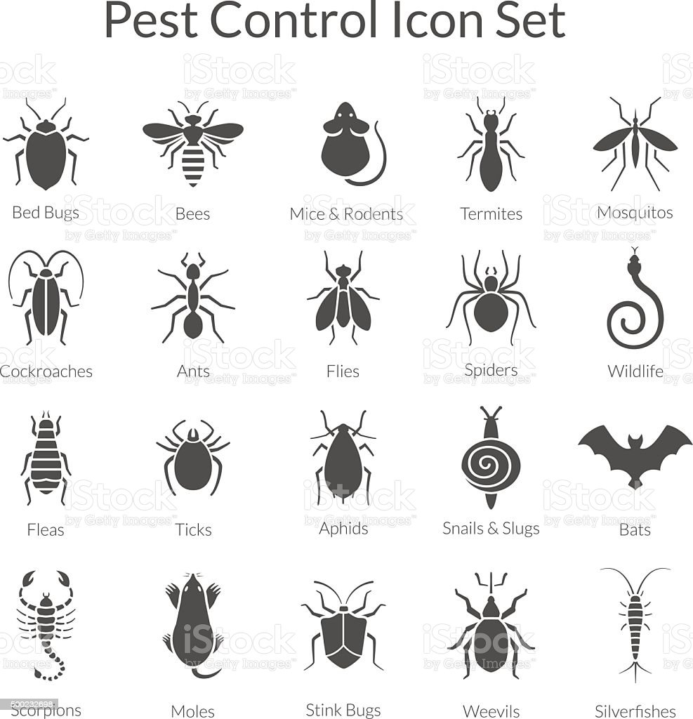 Vector Conjunto de ícones com insetos para controle de pragas negócios - ilustração de arte em vetor