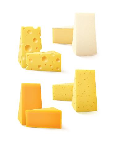 Vector Set of Kind Cheese Cheddar Bri Camembert
