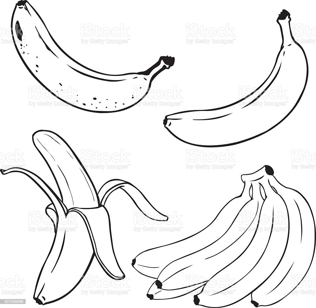 Vector Set of Line-Art Yellow Bananas. vector art illustration
