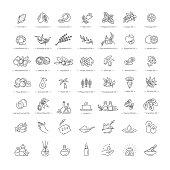 Set vector icons graphic thin outline in a linear design