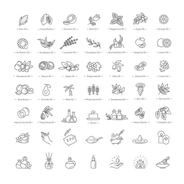ilustrações, clipart, desenhos animados e ícones de conjunto de ingredientes naturais e óleos de vector para cosméticos em estilo linear - condição natural