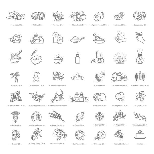 Vector set of natural ingredients and oils for cosmetics in linear style Natural ingredients and oils. Vector line icons natural condition stock illustrations