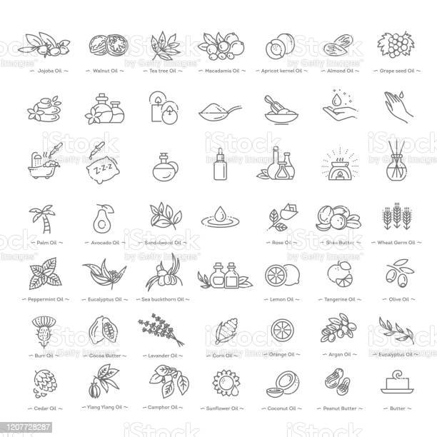 Vector Set Of Natural Ingredients And Oils For Cosmetics In Linear Style - Arte vetorial de stock e mais imagens de Amêndoa