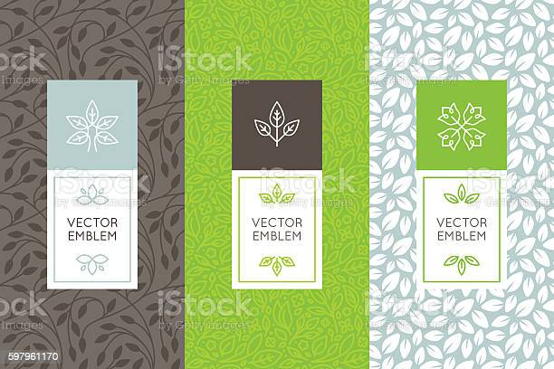 Vector set of packaging design templates vector id597961170?b=1&k=6&m=597961170&s=612x612&h=epzv49lkvvbc69tfogwduiz  gwmytgoro8t0g4crao=