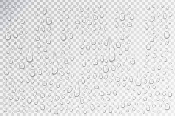 装飾やカバーの現実的な孤立した水滴のベクトルを設定します。 - 水滴点のイラスト素材/クリップアート素材/マンガ素材/アイコン素材