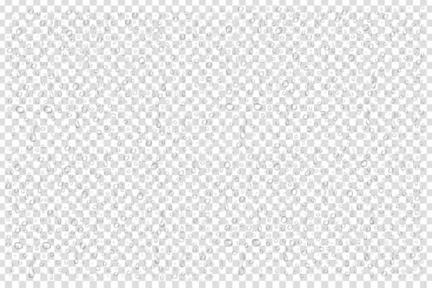透明な背景に現実的な孤立した水滴のベクトルを設定します。 - 水滴点のイラスト素材/クリップアート素材/マンガ素材/アイコン素材
