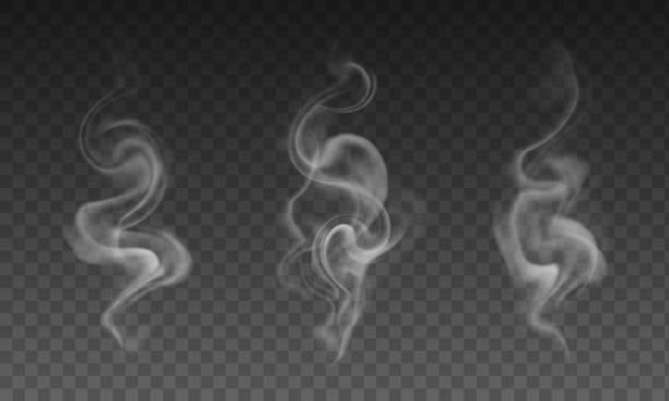 wektorowy zestaw realistycznych przezroczystych efektów dymu - dym papierosowy, kawa lub gorąca herbata parowa - coffee stock illustrations
