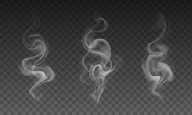 vector set of realistic transparent smoke effects - cigarette smoke, coffe or hot tea steam - smoke stock illustrations