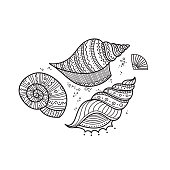 Vector set of shells in ethnic tribal boho style with ornament. Can be printed and used as coloring page, design element, template, etc.