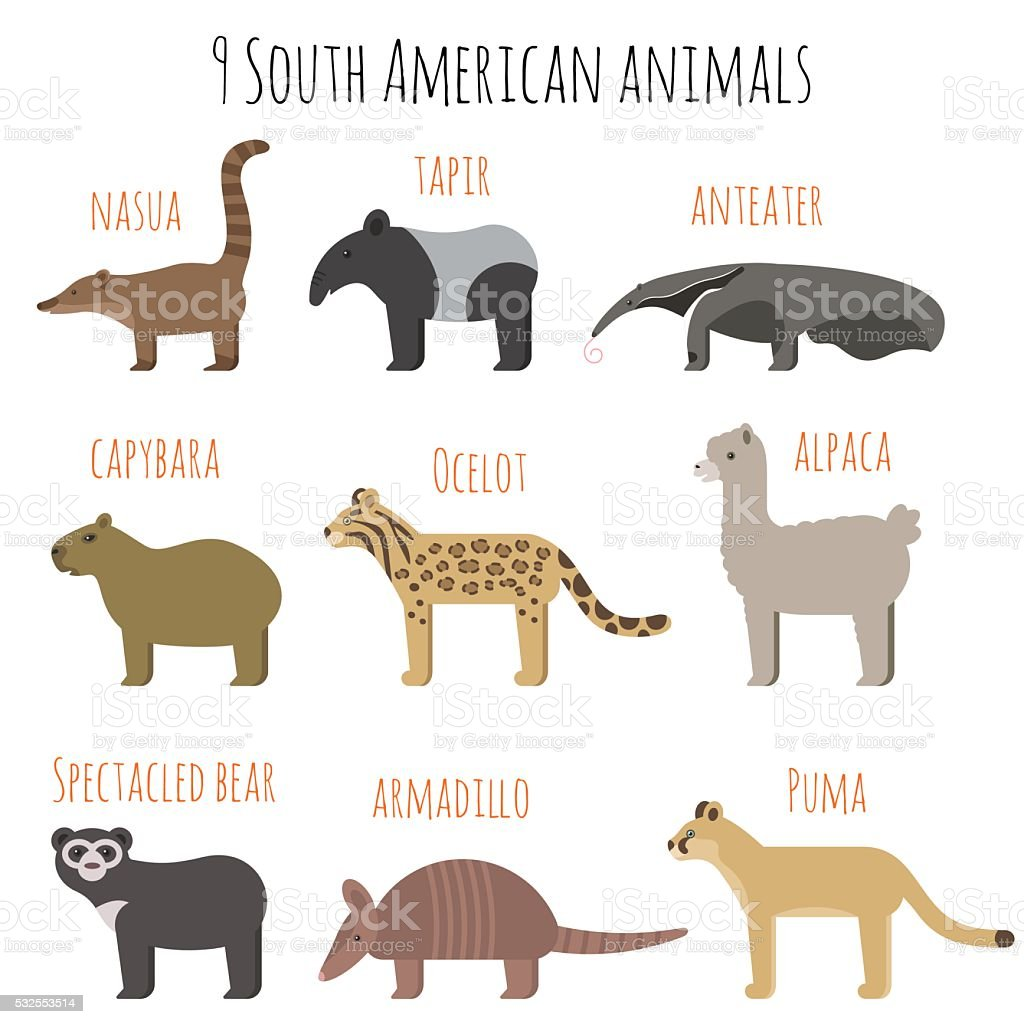 Vector set of South American animals icons. vector art illustration