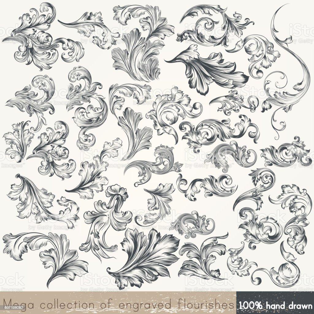 Vector set of swirl elements for design. Calligraphic vector vector art illustration