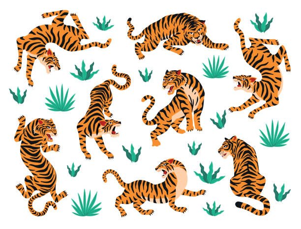 Vector set of tigers and tropical leaves. Trendy illustration. Vector set of tigers tropical leaves. Trendy illustration. tiger stock illustrations