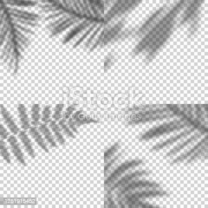 Vector Set of Transparent Shadows of Leaves. Decorative Design Elements for Collages. Creative Overlay Effect for Mockups.