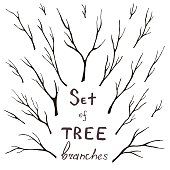 Vector set of tree branches, trunk, twig, stem
