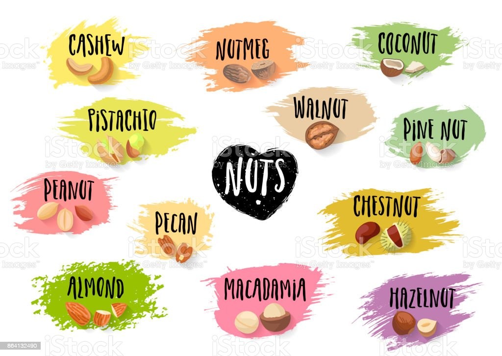 Vector set of trendy emblems of various nuts and black lettering on colorful blots. royalty-free vector set of trendy emblems of various nuts and black lettering on colorful blots stock vector art & more images of agriculture