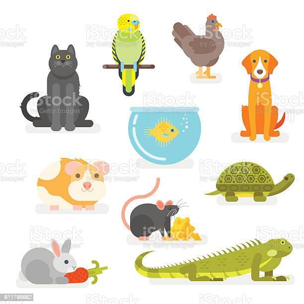 Vector set of various home pets vector id611766662?b=1&k=6&m=611766662&s=612x612&h=qc0jq3aswx hhtlhrhcwqm ztgt6bju5rhrlcjxr0ao=