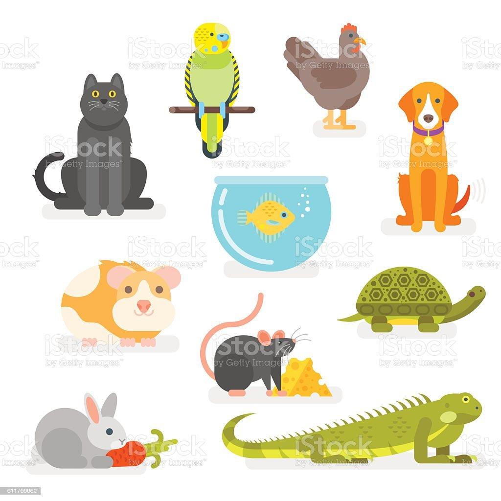 Vector set of various home pets vector art illustration