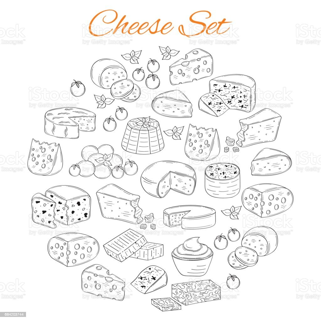 Vector set of various types of cheese, hand drawn illustration isolated on white background vector art illustration