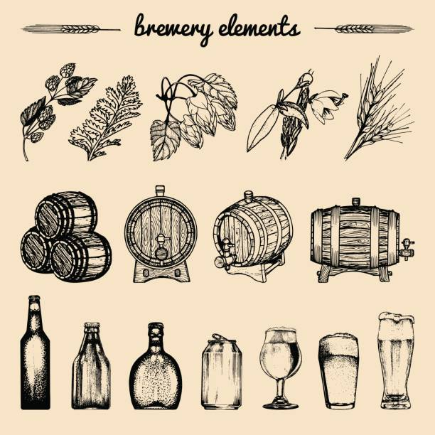 Vector set of vintage brewery hand sketched elements,barrel, bottle,glass,herbs and plants. Retro beer icons collection. vector art illustration