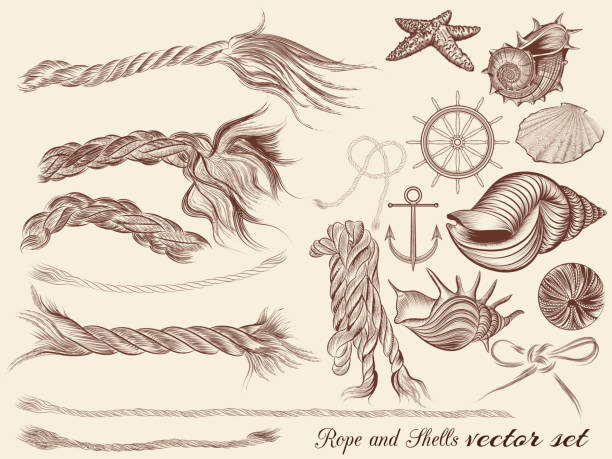 Vector set of vintage elements on sea vacation theme vector art illustration