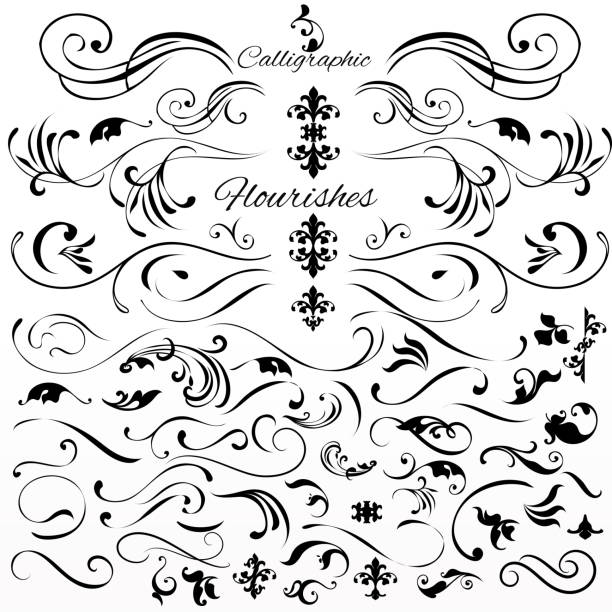 Vector set of vintage styled calligraphic elements or flourishes vector art illustration