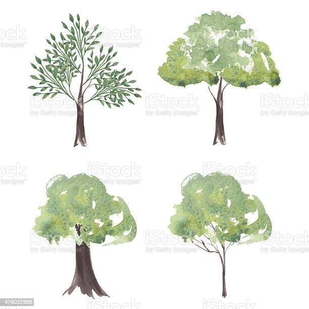 Vector set of watercolor trees different silhouettes trees vector id476032888?b=1&k=6&m=476032888&s=612x612&h=kvbmiltm zyzsixbg2sfbmieynbcka3hwvyn9qxjnhq=