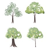 Vector set of watercolor trees. Different Silhouettes Trees