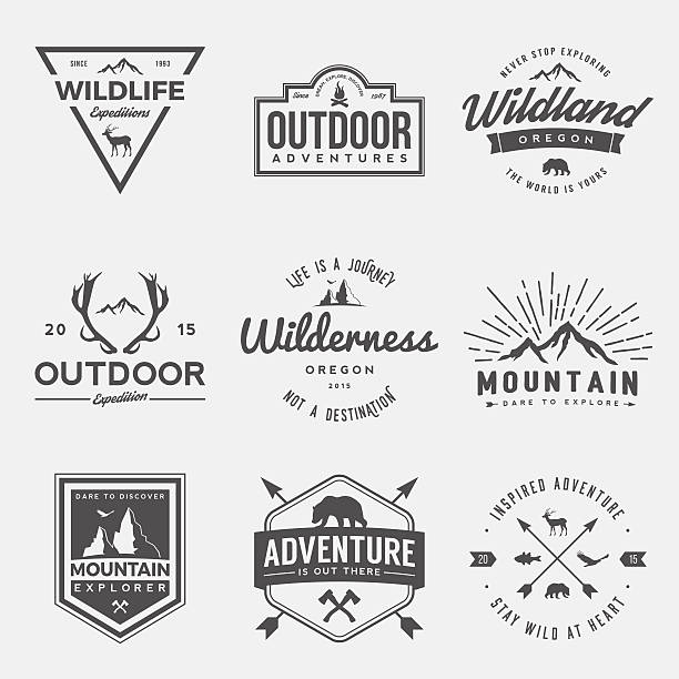 ilustraciones, imágenes clip art, dibujos animados e iconos de stock de vector set of wilderness and nature exploration vintage  logos - viaje a la naturaleza