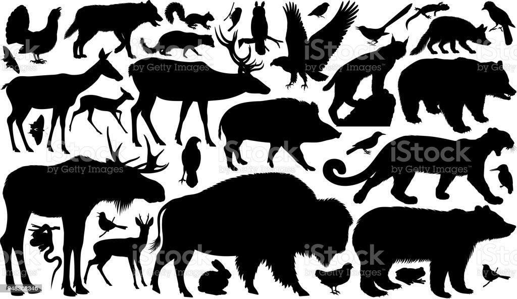 vector set of woodland animals silhouettes vector art illustration