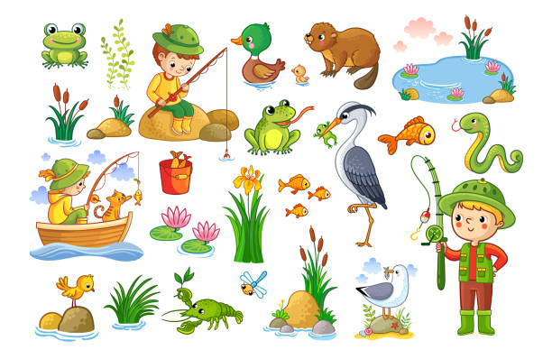 vector set on a forest children theme. - pond stock illustrations