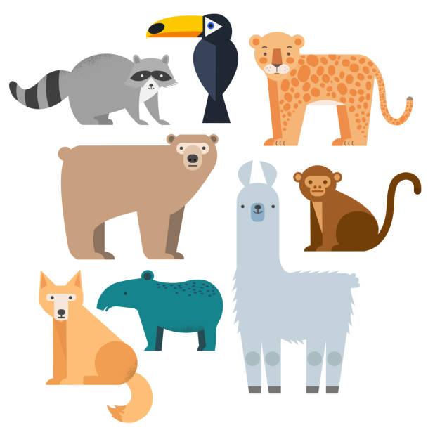 vektor setzen wilde tiere. - ameisenbär stock-grafiken, -clipart, -cartoons und -symbole