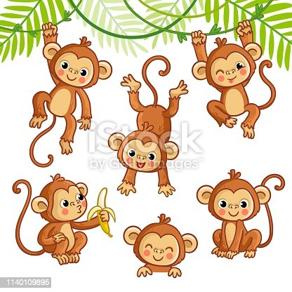 Vector set with monkey in different poses. Vector animal collection in cartoon style.