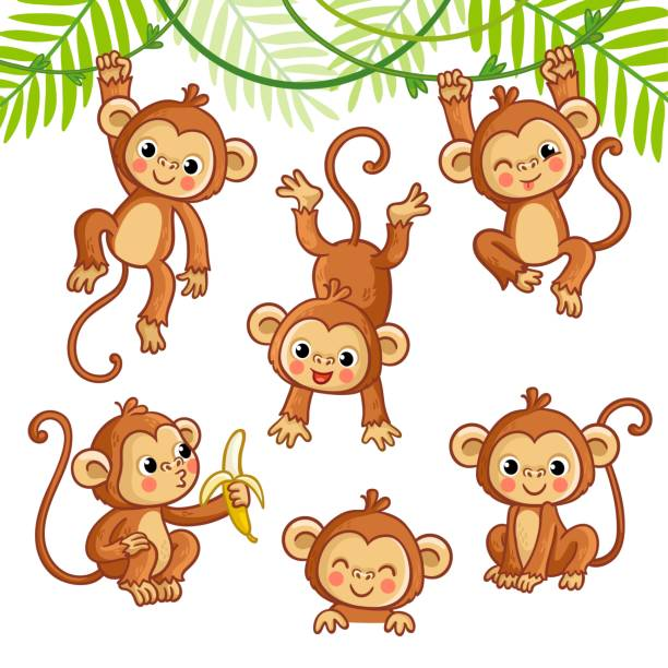 vector set with monkey in different poses. - monkey stock illustrations