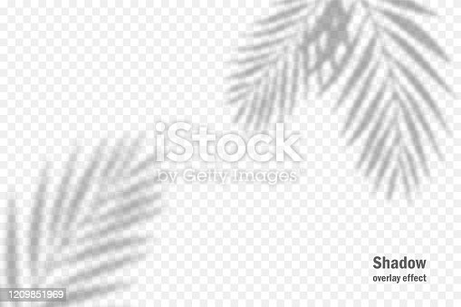 istock Vector shadow overlay effect. Transparent soft light and shadows from branches, plant and leaves. Mockup of transparent leaf shadow and natural lightning. 1209851969