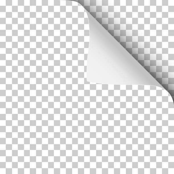 vektor-blatt transparentpapier mit rechts oben zusammengerollt ecke und weiche schatten. - buchseite stock-grafiken, -clipart, -cartoons und -symbole