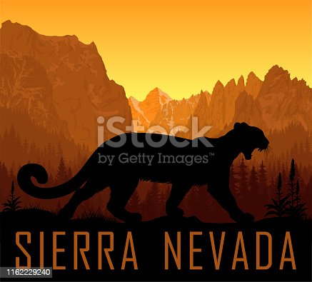 vector Sierra Nevada range mountains  with puma cougar (Puma concolor) or mountain lion