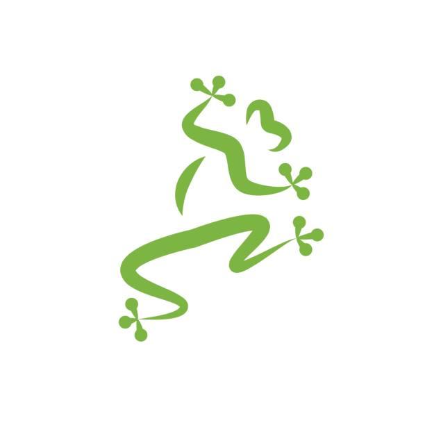 vector sign frog company - gecko stock illustrations, clip art, cartoons, & icons