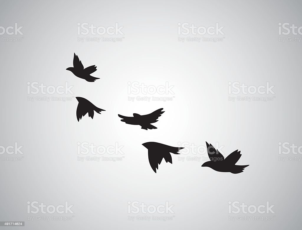 Vector silhouette flying birds on white background. Tattoo