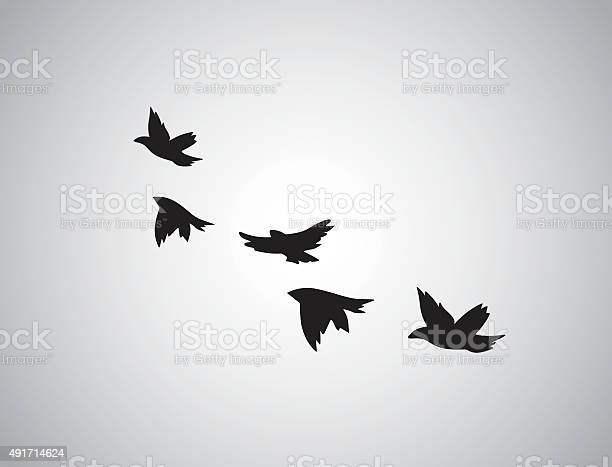 Vector silhouette flying birds on white background tattoo vector id491714624?b=1&k=6&m=491714624&s=612x612&h=hw25xn lx3qn3nrb55qgwekgnrhjsukr3dq 5mq wsu=