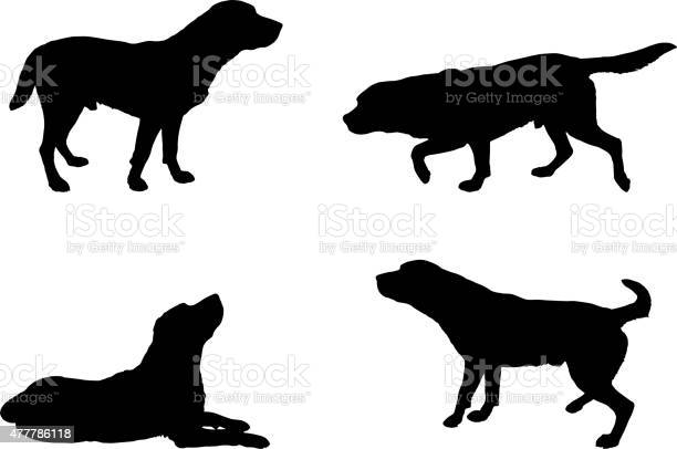 Vector silhouette of a dog vector id477786118?b=1&k=6&m=477786118&s=612x612&h=i etweuopj5umc0vujx3 2krdo3k8ci8vk cperv4rg=