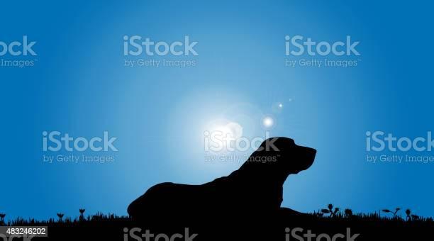 Vector silhouette of a dog vector id483246202?b=1&k=6&m=483246202&s=612x612&h=dgkzougcorhdslmgy8a lm7skfsocmlhctzq8vrqijg=